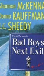 Everlasting Bad Boys_cover