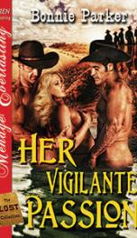 Vigilante Passion_cover