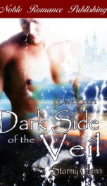 Dark Side of the Veil   _cover
