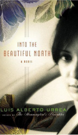 Into the Beautiful North_cover
