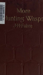 More hunting wasps. Translated by Alexander Teixeira de Mattos_cover