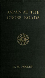 Japan at the cross roads_cover