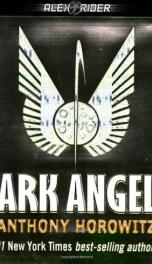 Ark Angel_cover