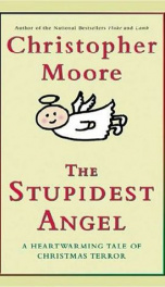 The Stupidest Angel_cover