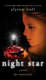 Night Star   _cover