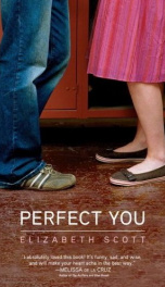 Perfect You  _cover