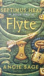 Flyte _cover
