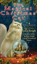 The Magical Christmas Cat_cover