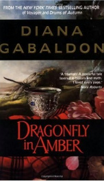 Dragonfly In Amber _cover