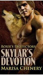 Skylar's Devotion_cover