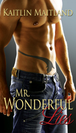 Mr. Wonderful Lies_cover