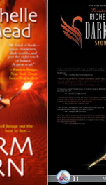 Storm Born (Dark Swan #1) _cover