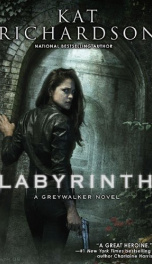 Labyrinth  _cover