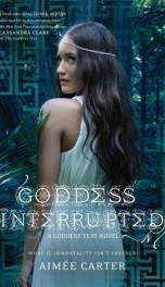 Goddess Interrupted   _cover