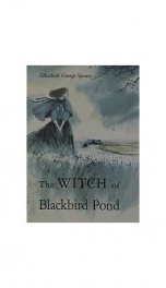 The Witch of Blackbird Pond_cover