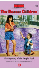 Boxcar Children #38 Mystery of the Purple Pool_cover