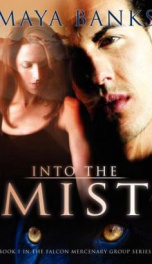 Into the Mist  _cover
