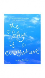 The Sky is Everywhere _cover